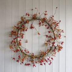 Nypekrans med nyper fra Rosa Helenae hybrida, villrose og hagerose Wreaths, Green, How To Make, Crafts, Home Decor, Pink, Christmas Wreaths, Ornaments, Doors