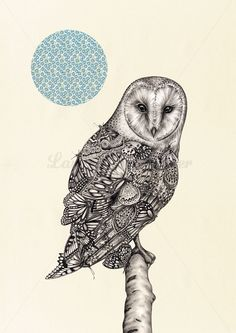 The Owl And The Butterfly  Illustration Art by LaurenMortimer, $123.63
