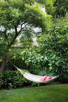 A hammock swings between the mature Seville orange tree and a jacaranda. Photography: Martina Gemmola - Lawn and Garden Today Garden Swing Seat, Backyard Hammock, Backyard Trees, Garden Trees, Backyard Landscaping, Hammock Ideas, Landscaping Ideas, Family Garden, Home And Garden