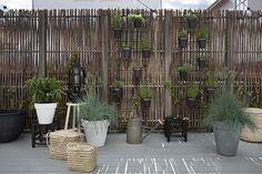 dar amïna: la fiesta de la primavera Artificial Plants And Trees, Artificial Plant Wall, Desert Landscaping Backyard, Backyard Patio, Luz Natural, Small Space Gardening, Garden Spaces, Urban Gardening, Plant Wall Diy