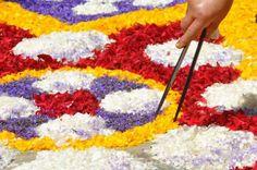 مهرجان سجاد الزهور فى ايطاليا
