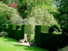 http://yourwayhomeaz.com/wp-content/uploads/2012/06/trend-garden.jpg
