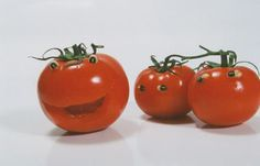 Image result for tomatoes pictures