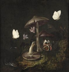 Otto Marseus van Schrieck, A 'sotto bosco' with mushrooms, butterflies, a dragonfly, a snake and a lizard , 17th century