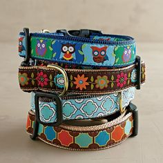 Ribbon Dog Collars | The Company Store