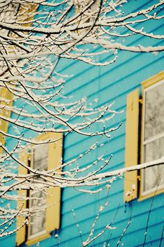 beautiful color combination of aqua, yellow and white. Aqua, Yellow Turquoise, Shades Of Turquoise, Blue Yellow, Dark Blue, Tiffany Blue, Yellow Houses, Creature Comforts, Color Stories