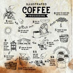 8 Abundant Clever Ideas: But First Coffee Espresso coffee photography quotes.Coffee Latte At Home coffee infographic inspiration. Coffee Farm, Coffee Humor, Coffee Shop, Coffee Lovers, Coffee Study, Coffee Quotes, Best Coffee, Iced Coffee, Coffee Drinks