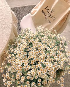 Spring Aesthetic, Nature Aesthetic, Flower Aesthetic, Aesthetic Vintage, Photographie Indie, Cream Aesthetic, My Flower, Flower Types, Daisy Flowers