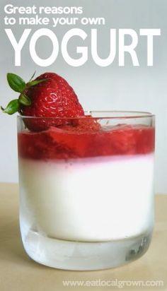 Great Reasons to Make Your Own Yogurt