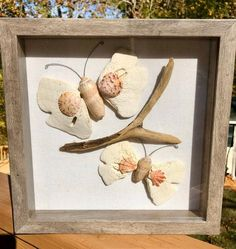 Beach Themed Crafts, Beach Crafts, Sand Dollar Crafts, Seashell Projects, Driftwood Crafts, Driftwood Signs, Seashell Art, Seashell Crafts, Seashell Ornaments