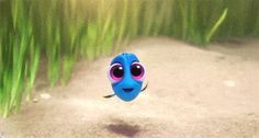 Screencap Gallery for Finding Dory Bluray, Disney, Pixar). Dory is a wide-eyed, blue tang fish who suffers from memory loss every 10 seconds or so. Tumblr Wallpaper, Disney Wallpaper, Iphone Wallpaper, Disney Fun, Disney Pixar, Disney Movies, Walt Disney, Pixar Movies, Disney Characters
