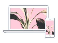 22 | Hello Lovely Living | Free Wallpapers For Your Desktop + Phone | Pink Plant Leaves