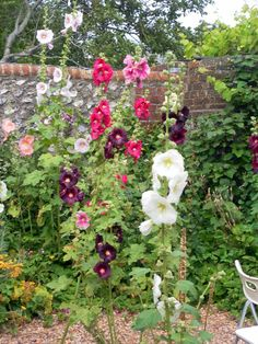 The garden at Charleston, Sussex, home of Vanessa Bell and Duncan Grant of the Bloomsbury group