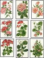 decoupage paper collage sheet pink flowers