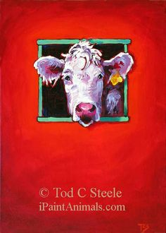 Cow Painting - Theres Something in the Way She Moos - Cow Art Print from Original Painting by Tod C Steele - 5x7 via Etsy