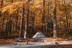 In this article, I will be sharing some of the best campgrounds in Hocking Hills Ohio. If you are camping there, consider choosing these campgrounds. Go Camping, Outdoor Camping, Park Model Rv, Outdoor Shelters, Best Campgrounds, Horse Camp, Water Activities, Ways To Travel, Travel Pictures
