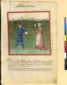 Tacuinum Sanitatis - BNF Ms. Latin 9333 Date: Rhineland, mid- 15th century.  fol 48r ?