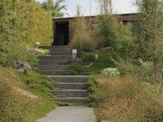 Xanthe White garden