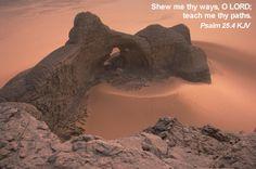 Shew me thy ways, O LORD; teach me thy paths. Psalm 25:4
