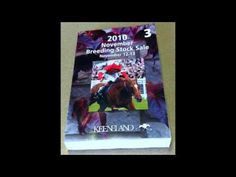 """▶ Racing Term #23 """"Black Type"""" of Frankie Lovato's 365 Days of Terminology - YouTube"""