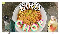 HOW TO MAKE BIRD CHOP | Making My Birds' Chop - YouTube Bird Toys, Cat Toys, Parrot Chop, Bird Cage, Crafts For Kids, The Creator, Parakeets, Birds, Beautiful