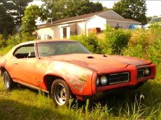 Junk Judge - I don't know who owns it, if anyone, but there she sits. Just wasteing away. Pontiac Judge, Pontiac Gto, Good Looking Cars, Rusty Cars, Old School Cars, Fast And Furious, Barn Finds, American Muscle Cars, General Motors