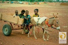 Kinder auf Eselskarren   solar-afrika.de