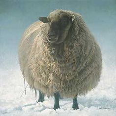 I think I needs me a sheep. I don't think a sheep would pee in my daughter's school bag or on my sketchbook. Painting of my future sheep by Robert Bateman Sheep Paintings, Animal Paintings, Alpacas, Farm Animals, Cute Animals, Wild Animals, Wooly Bully, Baa Baa Black Sheep, Sheep Art