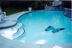 Custom Butterfly mosaic design by Artistry in Mosaics   Add a new dynamic to any pool with a custom ceramic or glass mosaic from AquaBlu