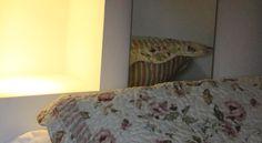 Booking.com: Ide Hostel Curitiba , Curitiba, Brasil - 11 Opinião dos hóspedes . Reserve já o seu hotel!