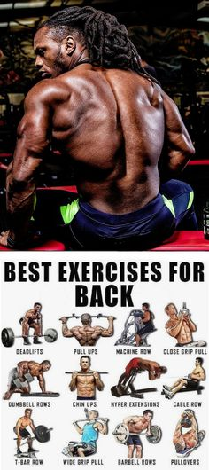 Arm Day. fitness. fitness motivation. men's fitness. ifbb. ifbb pro. bodybuilding. body building. body building workout. arnold. arnold classic. mr olympia workout. #fitness #bodybuilding Best Exercise For Back, Back Day Workout, Lat Workout, Traps Workout, Arnold Back Workout, Workout Tips, Push Pull Workout Routine, Workout Challenge, Gym Workouts For Men