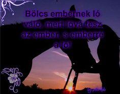 Bölcs embernek ló való mert lóvá tesz az embert s emberre a ló!
