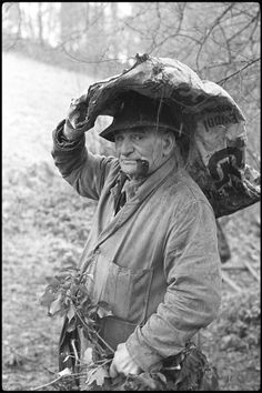 Archie Parkhouse with ivy for sheep   •  is James Ravilious © Beaford Arts