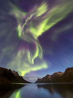 Phoenix Rising over Norway---amazing video of the auroral display of Norway:  http://on.natgeo.com/XLSLdG