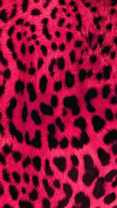 The Effective Pictures We Offer You About animal wallpaper iphone wolves A quality picture can tell Cheetah Print Wallpaper, Pink Wallpaper Iphone, Animal Wallpaper, Colorful Wallpaper, Cellphone Wallpaper, Aesthetic Iphone Wallpaper, Cool Wallpaper, Aesthetic Wallpapers, Screen Wallpaper