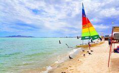 Disfrutando la vida, ¡Esto es #SanFelipe! #BajaCalifornia  Aventura compartida por jp__hernandez