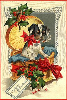A Merry Christmas vintage postcard. Josie...it is yet another smoking animal.  LOVE THIS!