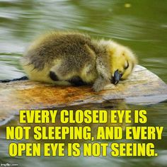 Every closed eye is not sleeping, and every open eye is not seeing. -Bill Cosby