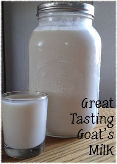 """Goat's milk gets a bad rap. I've heard people describe goat's milk as """"goaty"""" or just plain gross. But when handled properly, it isn't that way at all! Keep it cold! Keeping Goats, Raising Goats, Goat Milk Recipes, Goat Cheese Recipes, Goat Pen, Nubian Goat, Goat Care, Nigerian Dwarf Goats, Mini Farm"""