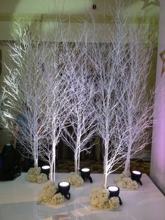 These 10ft White Birch Trees are perfect for a Winter Wonderland/Narnia/Christmas event.