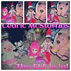 What the E.L.F.? Cedric McStuffins! Time for your check up....The ELF is in! Happy ELFMAS!