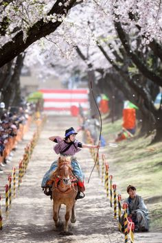 Yabusame is horseback archery, it's one of the Japanese traditional Samurai culture. Generally Yabusame is male sports, but sometimes girls and ladies of upper class Sumurai families trained Yabusame. Samurai, Mounted Archery, National Geographic Travel, Japanese Warrior, Shield Maiden, Traditional Archery, Running Horses, Animation, Historical Pictures