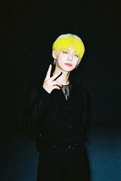 The Dream, Shared Folder, Fandom, Yellow Hair, Neon Yellow, Kpop, K Idols, Boyfriend Material, South Korean Boy Band