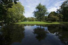 Het Park in Rotterdam bij de Euromast. landschapsarchitectuur