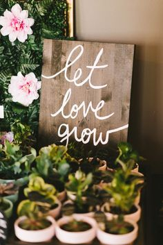 DIY Potted Succulent Favors - let love grow signage