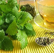 I planted lemon balm last year and never made use out of it.  This year, I vow to make plenty of recipes with lemon balm!