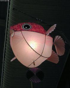 pink puffer fish lantern