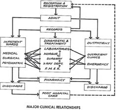 Flow diagram of major clinical relationships