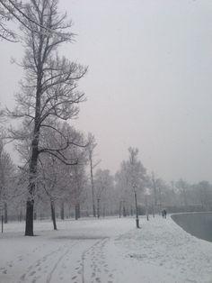 Nevicate nelle foto dei lettori @rep-parma Parco Ducale di Maria