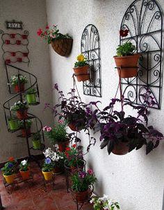 Tienda DecoCactus cactus crasas suculentas macetas de cemento cerámica banquetas romanas: Mis productos en tu casa
